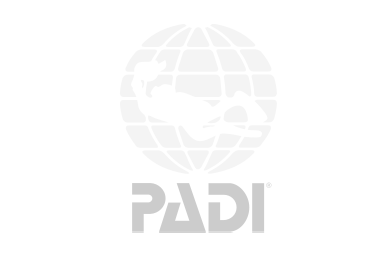 ag-padi-01b